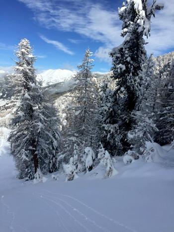 lumière de chasse de neige crochet vers le haut